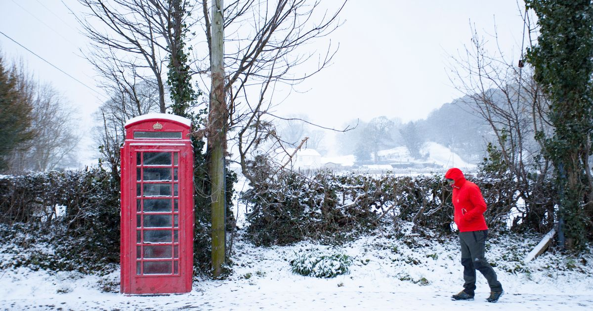 Temperatures 'could hit as low as -5C' after April heatwave freezes over
