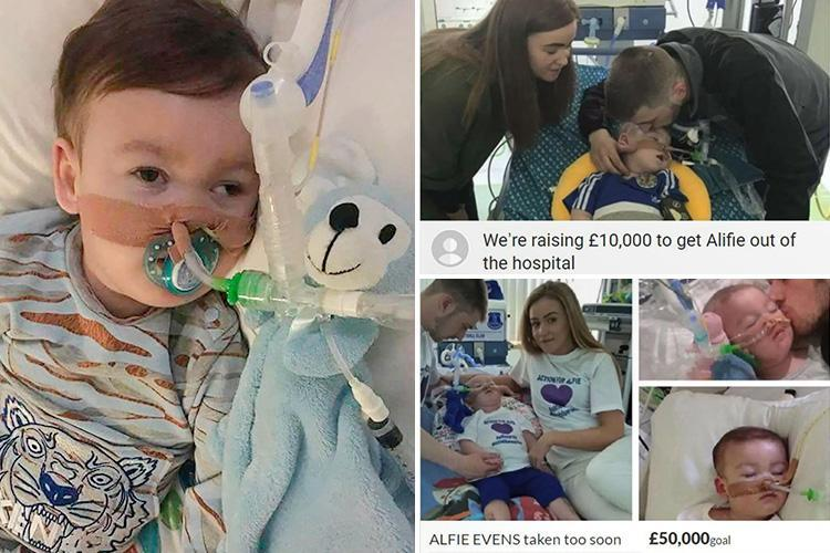 Alfie Evans supporters slam cruel fraudsters after at least 25 fake fundraising pages set up in tragic tot's name