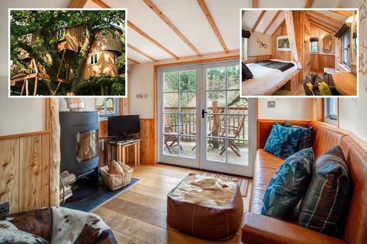 You can spend a night in Britain's largest TREEHOUSE for just £270 a night for a family of four