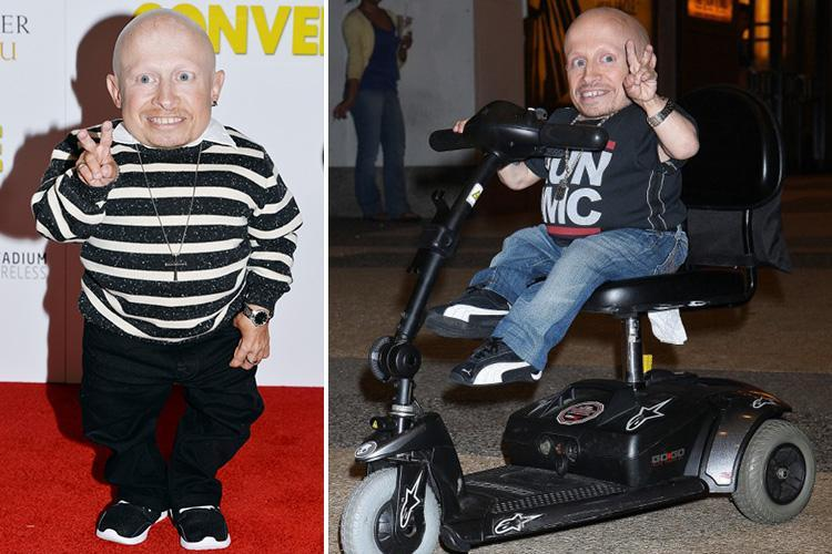 Verne Troyer's death was 'a possible suicide' and he had a 'very high level of alcohol' in his system, says coroner