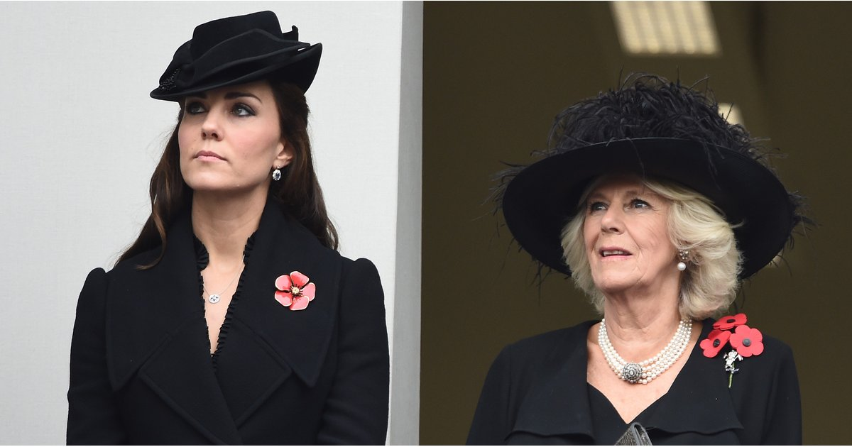 How to Wear a Poppy, the Royal Family Way