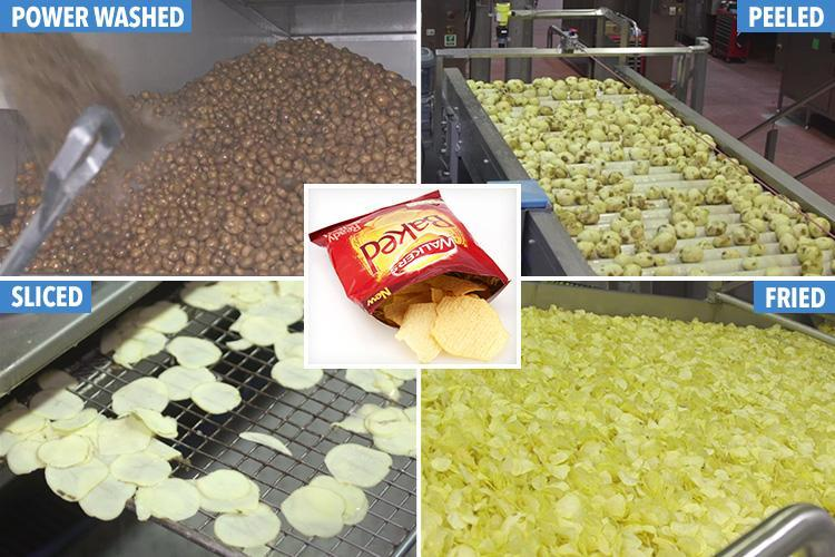 A day in the life of a crisp: We go inside the Walkers crisp factory to find out how a muddy potato becomes a golden snack