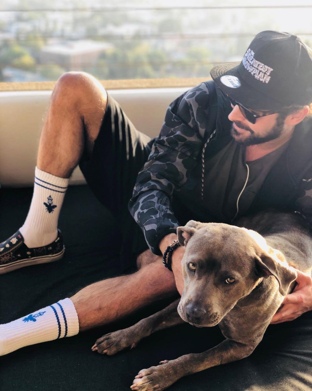 Zac Efron adopts dog that would've been euthanized