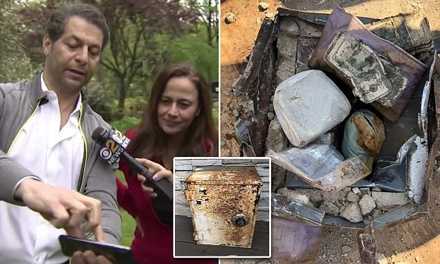 Couple find stolen SAFE full of diamonds, gold & cash in the backyard