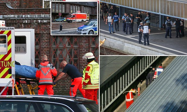 Knifeman shot dead after stabbing and injuring people on German train