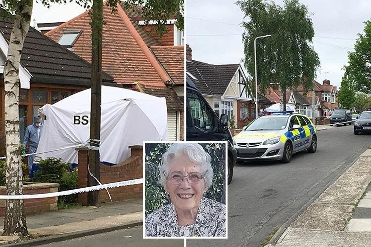 Mum-of-two, 85, beaten to death in 'cowardly and despicable' attack in her own home as cops hunt killer