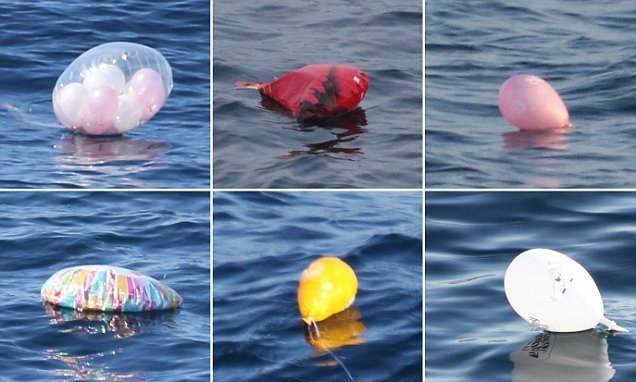 Campaigners call for mass balloon launches to be outlawed