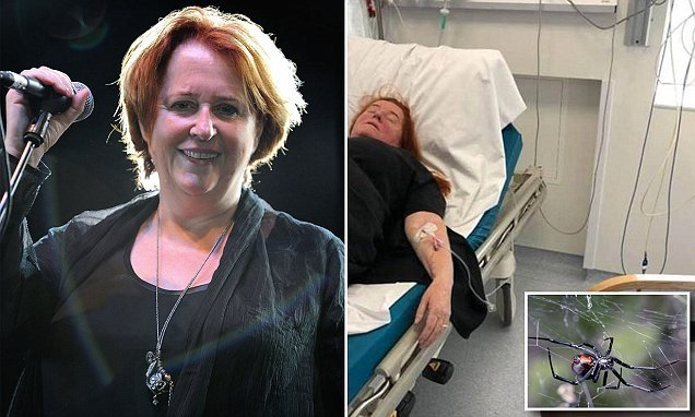 Irish singer Mary Coughlan fights for life after Australia spider bite