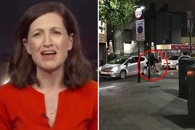 TV presenter tries to fight off masked thieves as they steal £15k camera moments after live report from London street