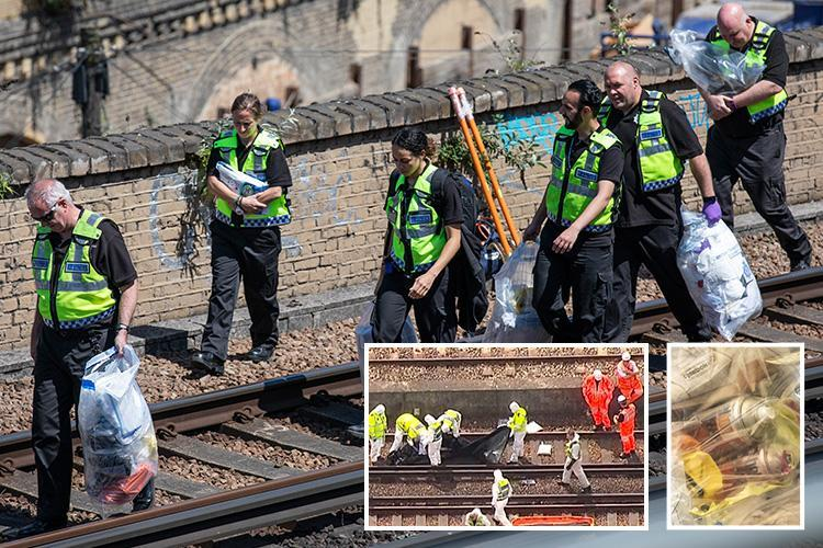 Loughborough Junction – Three 'graffiti artists' killed on train tracks had been dead 'for hours' before bodies found next to spray paint cans