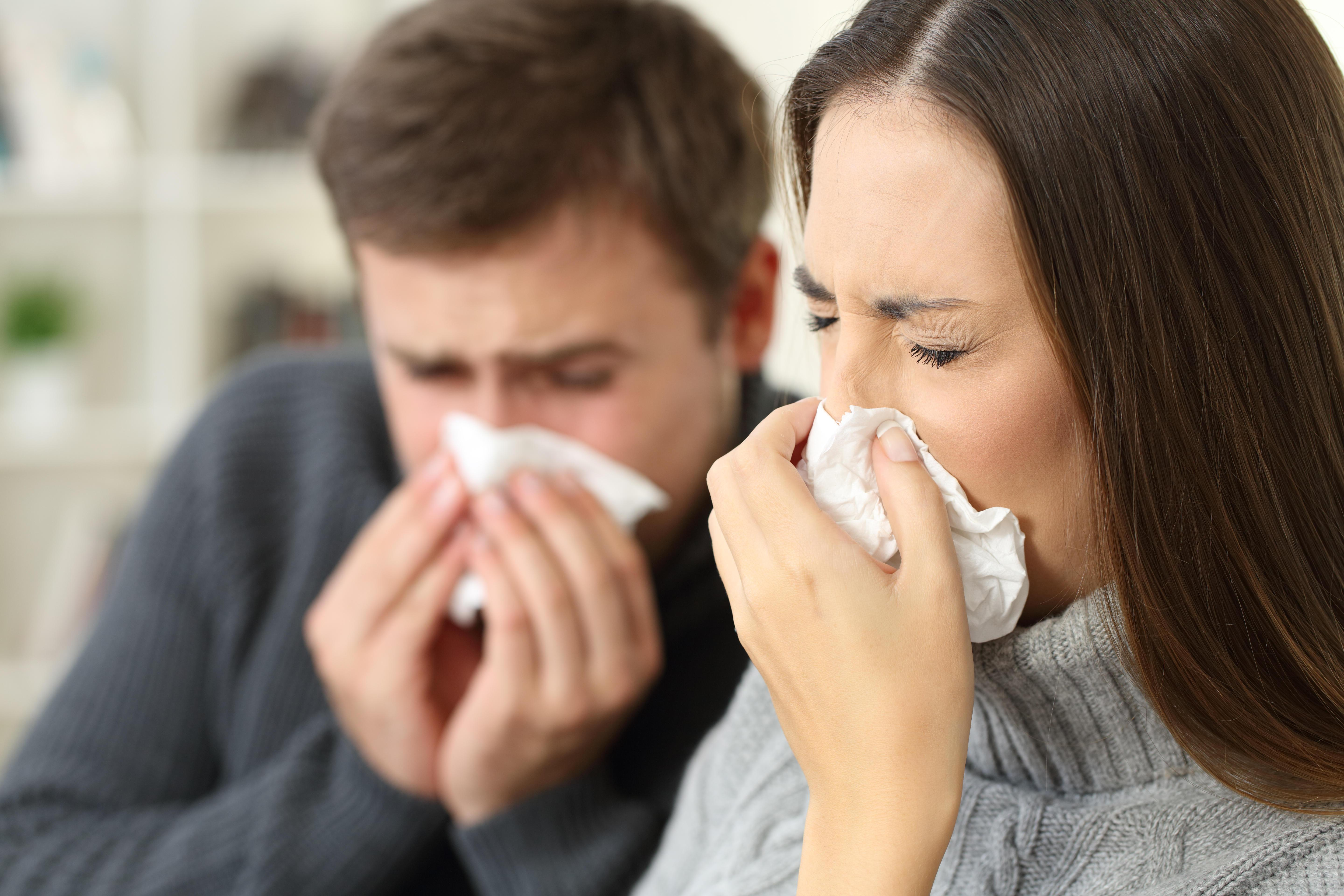 More sex and eight other helpful ways to ease hay fever without taking drugs