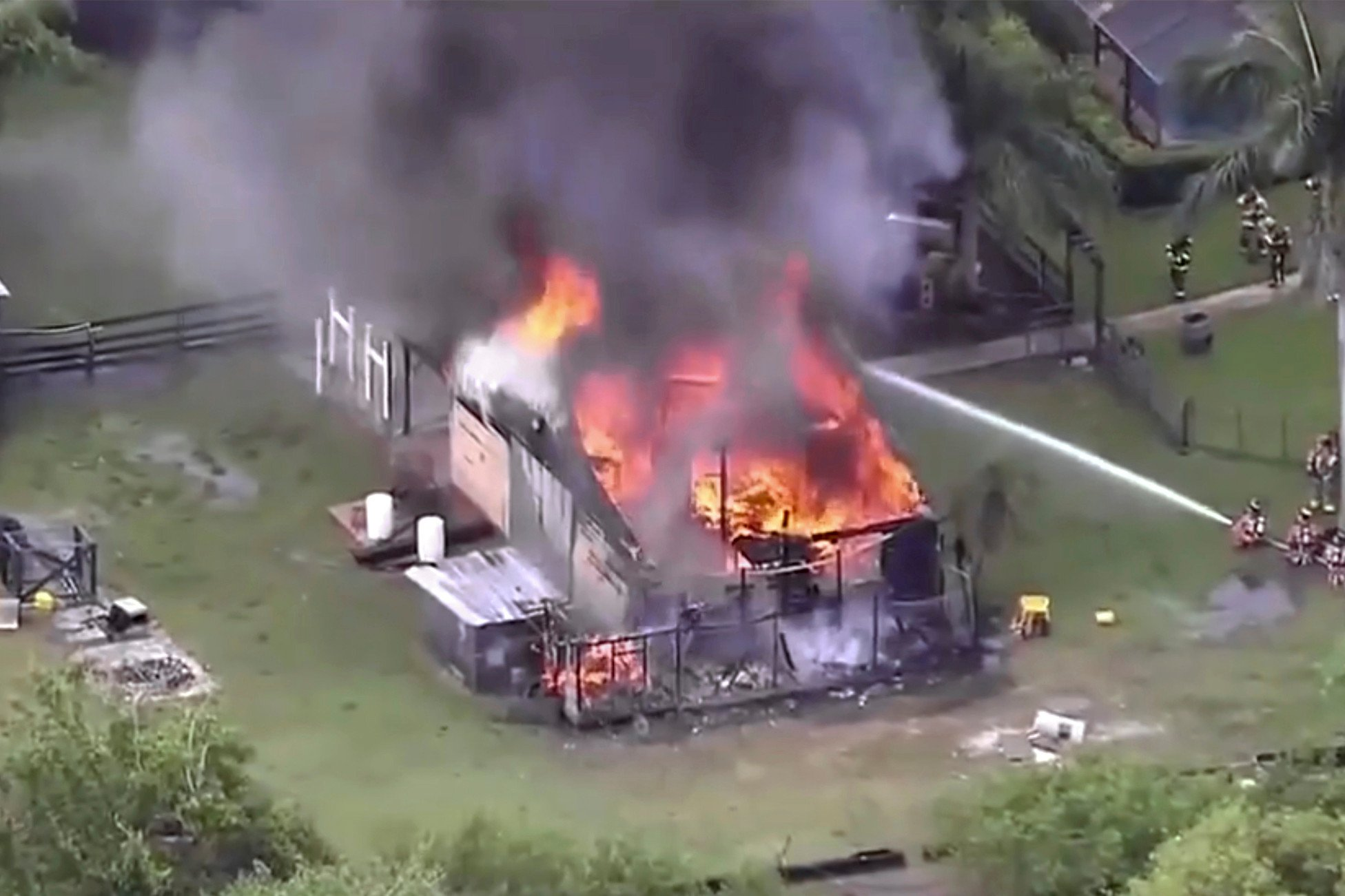 Hundreds of exotic animals killed in barn fire