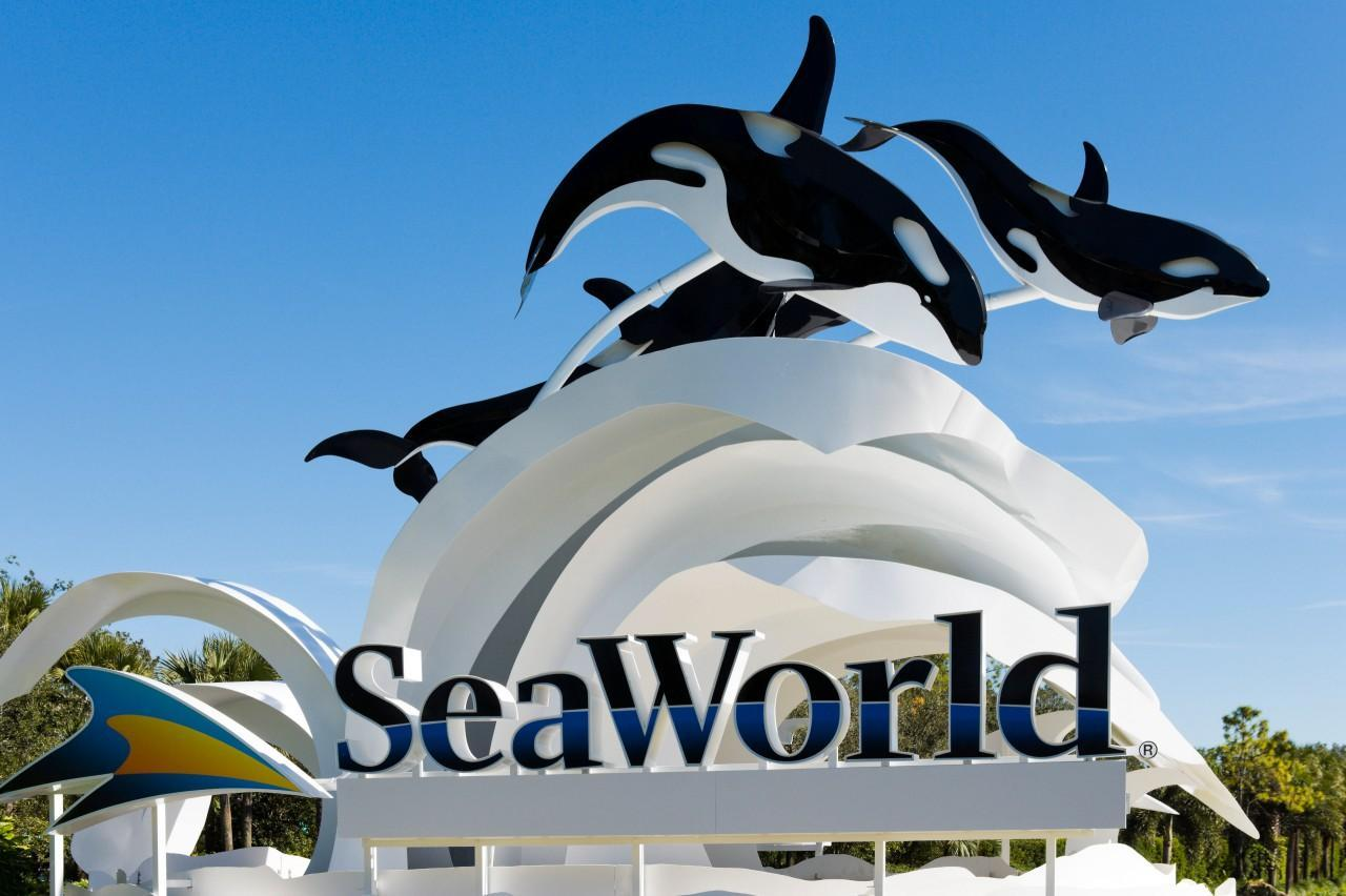 Thomas Cook cancels all trips to SeaWorld and Loro Parque theme parks over complaints about horrible conditions for killer whales