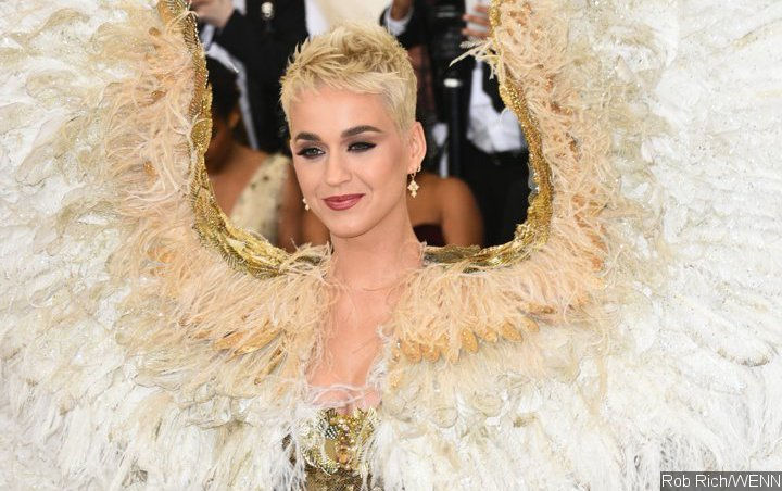 Katy Perry Wishes to Star in Comedy Movie