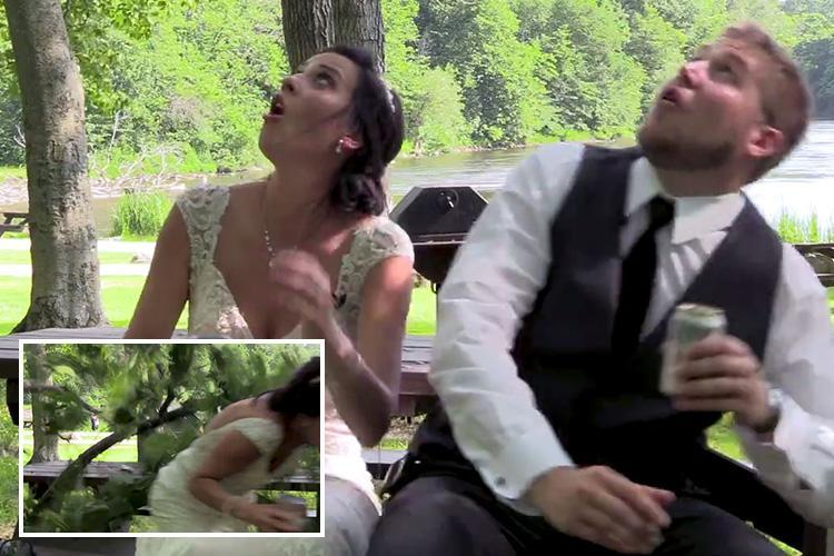 Bride and groom narrowly avoid being crushed by falling tree as they film loved-up video at their wedding