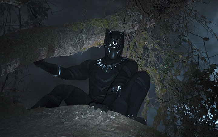 'Black Panther' Costumes and Props Coming to Smithsonian African-American Museum