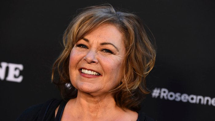 Roseanne Barr Considers TV Return: 'I've Already Been Offered So Many Things'