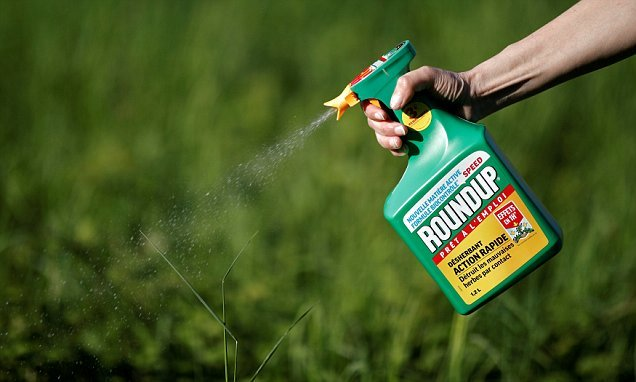 Weedkiller ingredient that left man with cancer found in British crops