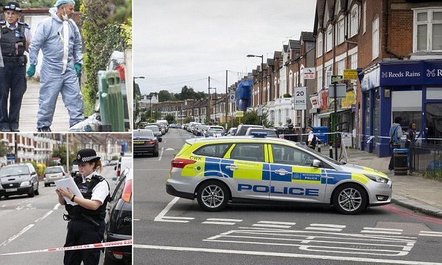 Man in his 60s dies after being stabbed at a property in south London