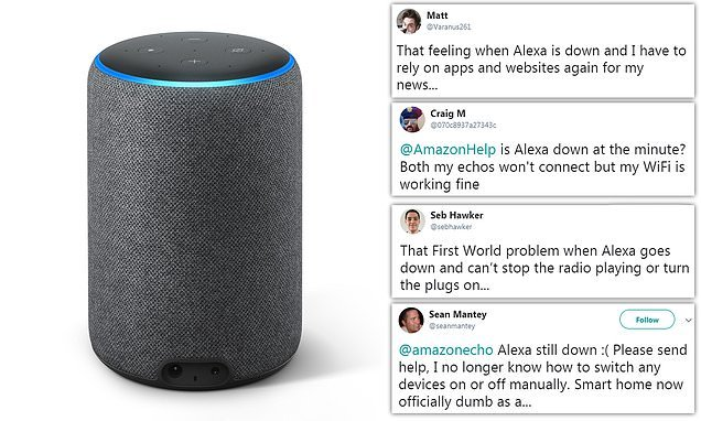 Amazon Echo customers claim virtual assistant has stopped working