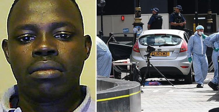 Westminster 'terror' crash suspect Salih Khater will stand trial next year after 'ploughing car into pedestrians outside Parliament'