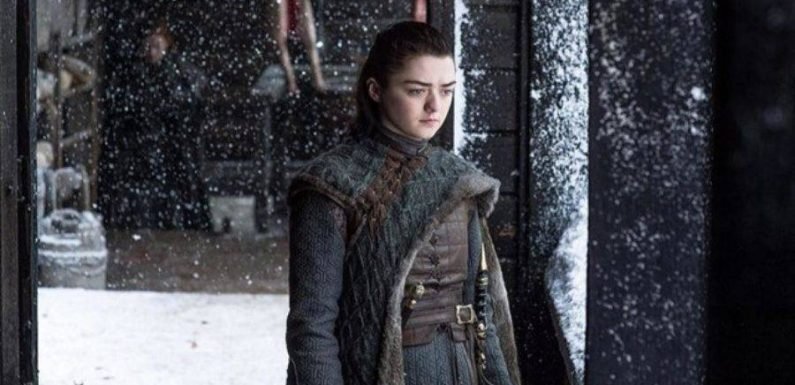 Maisie Williams: Final 'Game of Thrones' Season Is 'Incredible' for the Women