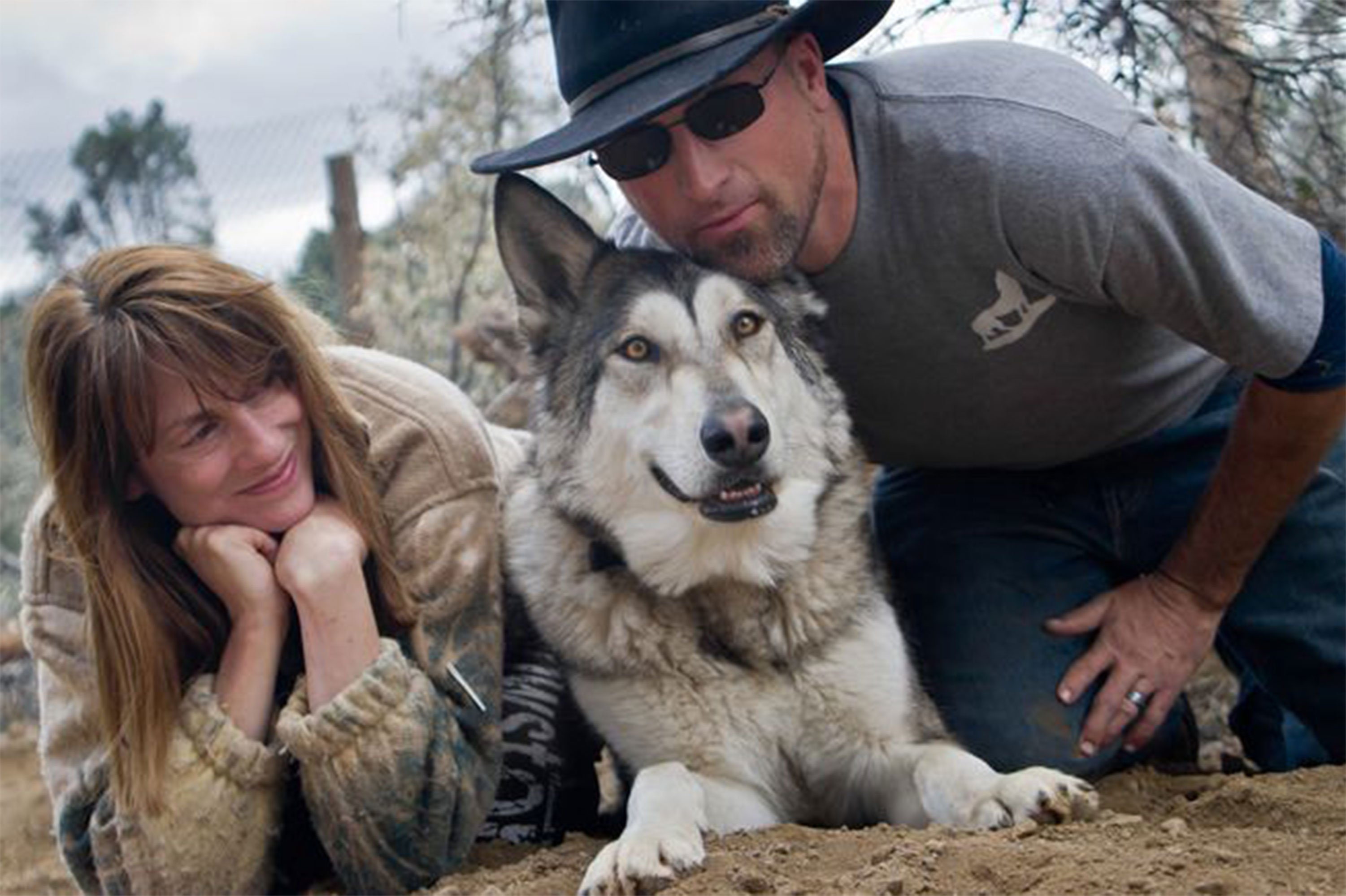 Animal Planet's New Stars: A Couple Dedicated to Rehabilitating Wolves and Warriors