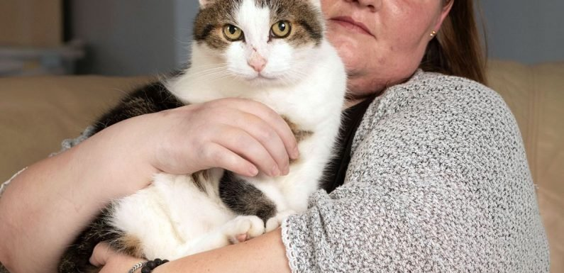 After losing the use of her hand, woman still adores the pet cat that bit her