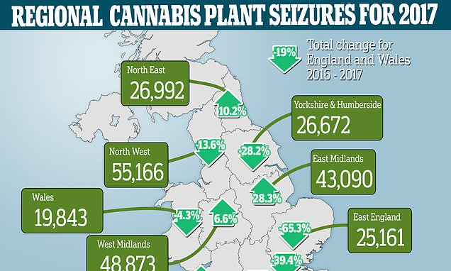 Britain's cannabis seizure hotspots in Midlands and North of England