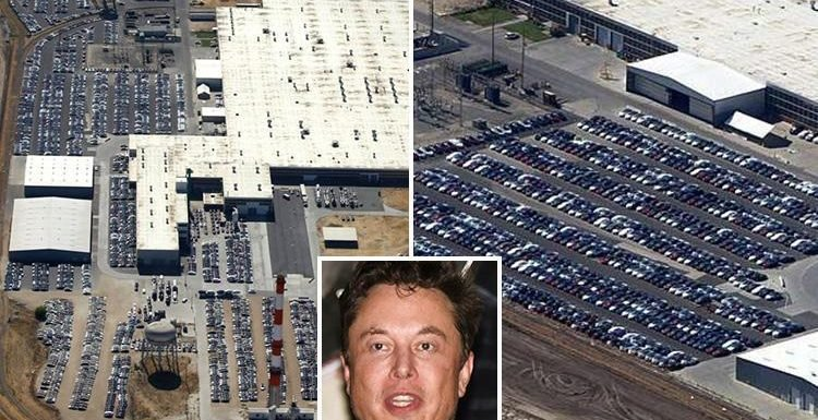 Thousands of Tesla cars spotted parked in mysterious locations across America as fears raised over Elon Musk's firm's future