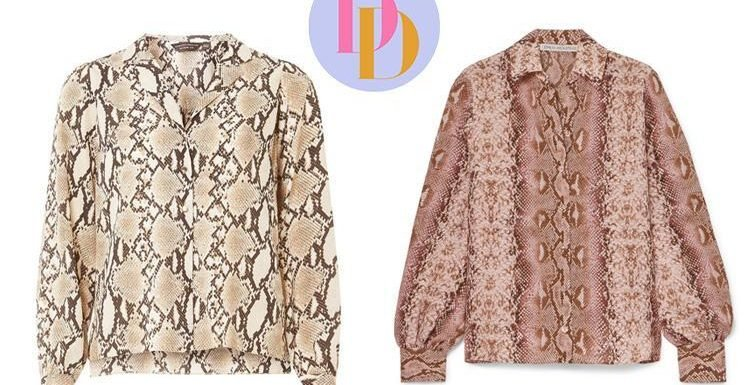 Dorothy Perkins is selling a £22 version of Emilia Wickstead's £620 snakeskin shirt… can you tell the difference?