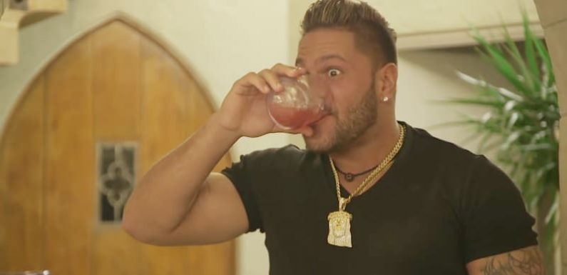 Ronnie from Jersey Shore gets dragged by a car, Jen Harley fight footage shown on family vacation