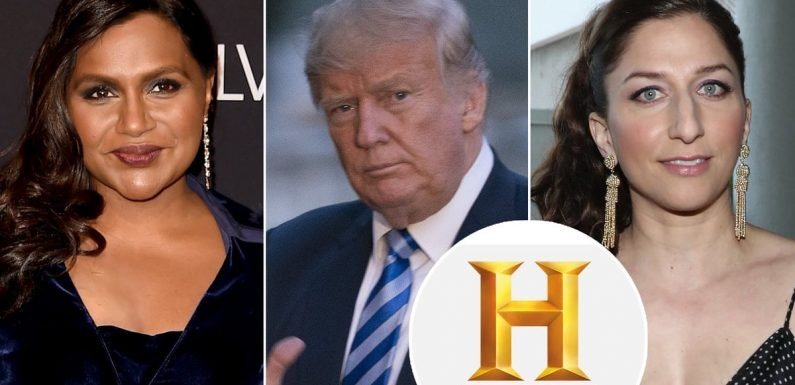 History Channel Claps Back at Trump's 14th Amendment Threat as Hollywood Vents Birthright Citizenship Concern and Confusion