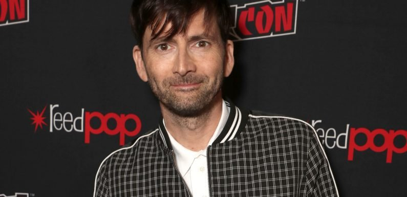 Doctor Who: David Tennant says season premiere was 'exciting on so many levels'