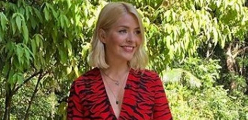 Why Holly Willoughby's jungle entourage costs I'm A Celebrity bosses a fortune