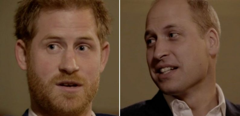 Prince William and Harry reveal how Prince Charles 'programmed them' as children