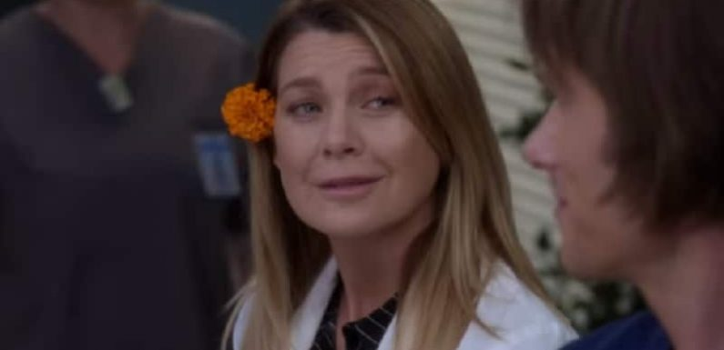 Grey's Anatomy spoilers: Special episode should entertain viewers