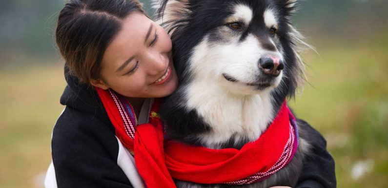 Here's What Your Pet Can Teach You About Life, Love, & Everything Else, According To Science