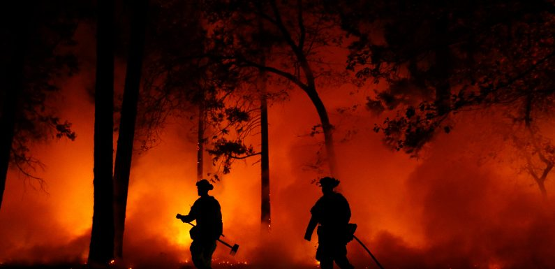 At Least 9 Dead in California Wildfires as Trump Threatens to Pull Federal Funding