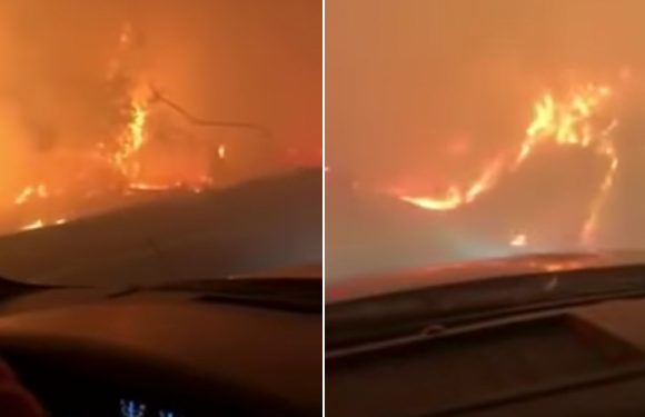 Harrowing video shows dad singing to daughter as they escape wildfires
