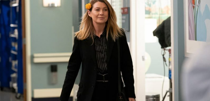 Why Did 'Grey's Anatomy' Bring Back So Many Dead Characters This Week?
