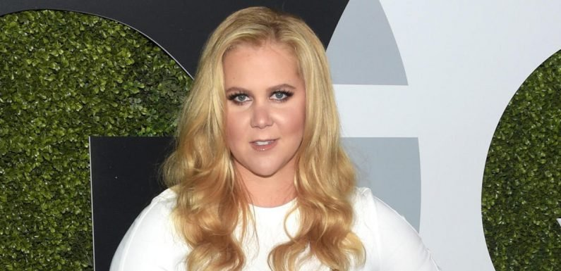 Pregnant Amy Schumer in hospital, cancels tour date