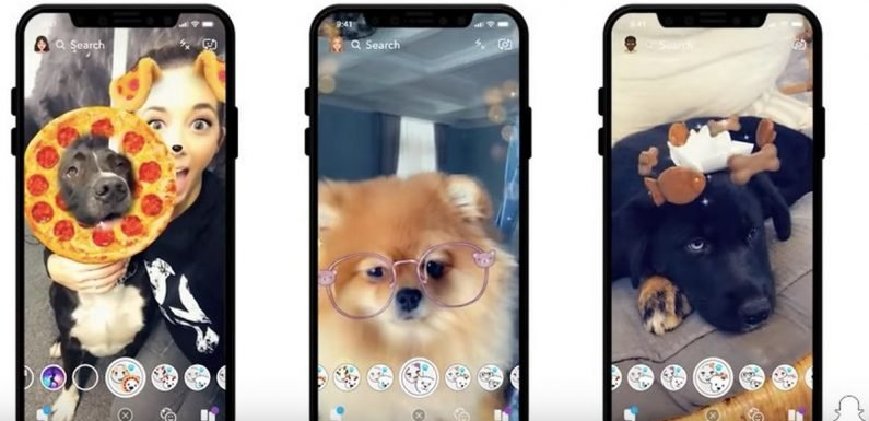 Snapchat adds filters for dogs – and they're absolutely adorable