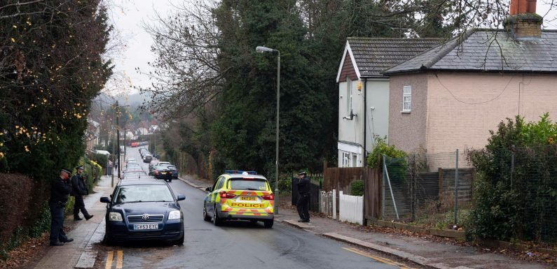 Woman, 77, dies after burglary at her house in North London as police hunt two suspects