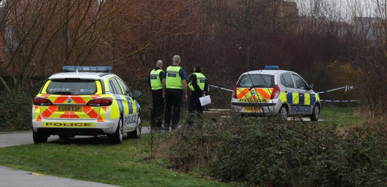 Man, 25, charged after woman in her 20s found dead in grassland behind houses in St Neots as eyewitnesses say they've 'never heard noises like it'