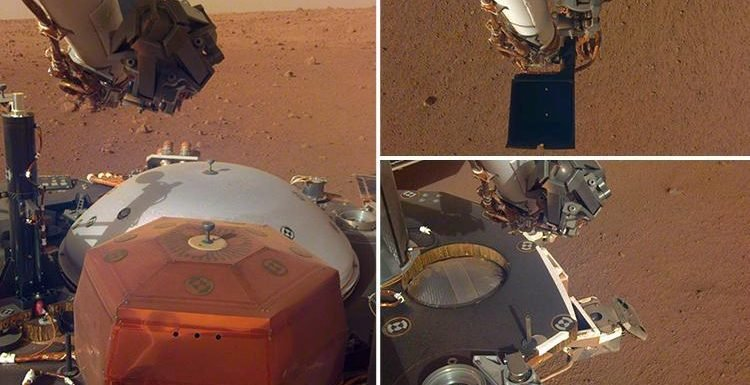 NASA's InSight Mars lander reveals clearest snaps yet of the Red Planet's surface as it stretches robotic arm