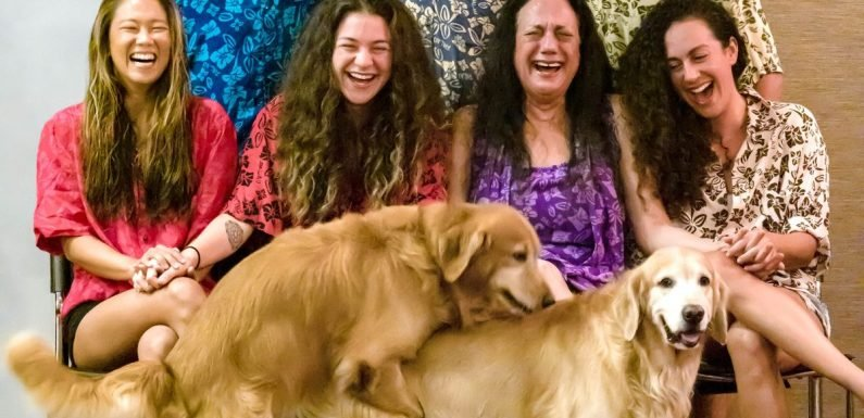 Family portrait ruined by dogs 'getting it on' as photographer takes picture