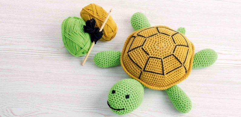 Lidl is selling 'amazing' Terry the Turtle crochet kits and shoppers are very excited