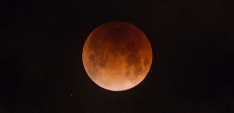 Everything you need to know about this month's amazing 'super wolf blood moon'