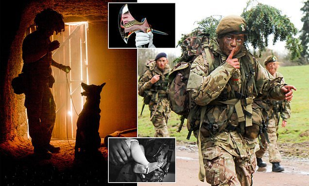 Brilliant pictures showcase the full variety of a career in the Army